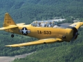 north-american-at-6-texan